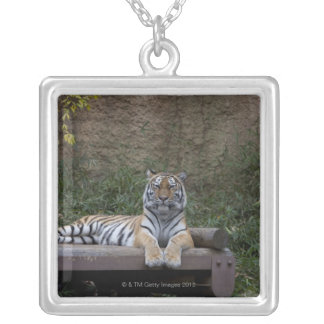 Hino, Tokyo Prefecture, Japan Silver Plated Necklace
