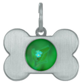 Hint of blue pet tag