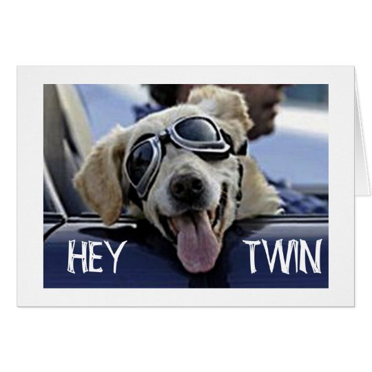 "HIP DOG SAYS HEY **TWIN** ""HAVE A HAPPY"