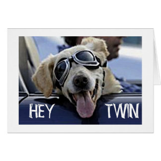 "HIP DOG SAYS HEY **TWIN** ""HAVE A HAPPY BIRTHDAY"" GREETING CARD"