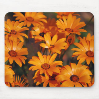 Hippie daisy flower symbolism mouse pads