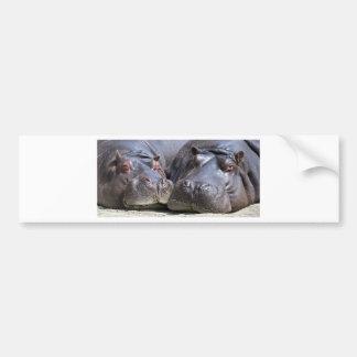 hippo-783 car bumper sticker