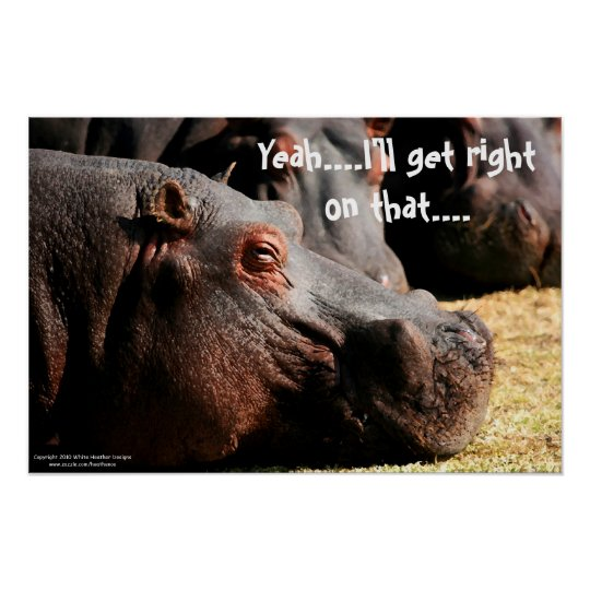 "Hippo attitude ""I'll get right on that"" poster"