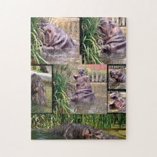Hippo_Collage,_Large_Jigsaw_Puzzle. Puzzle