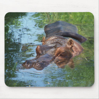 Hippo Hero Mouse Pad