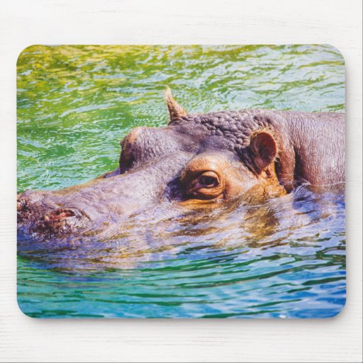 Hippo In Colorful Water, Animal Photography Mouse Pad
