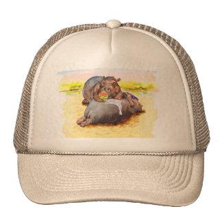 Hippo in the sun cap