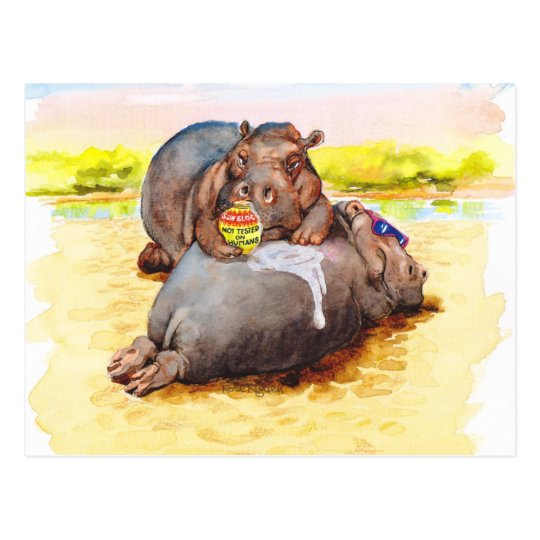 Hippo in the sun postcard