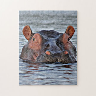 hippo jigsaw puzzle