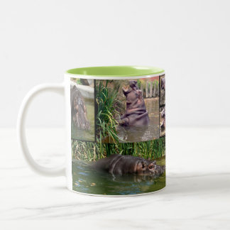 Hippo,_Photo_Collage_Two_Toned_Coffee_Mug. Two-Tone Coffee Mug