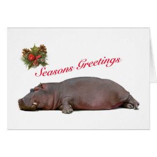 Hippo Seasons Greeting Card