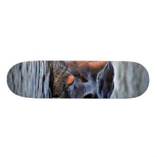 hippo skateboard deck