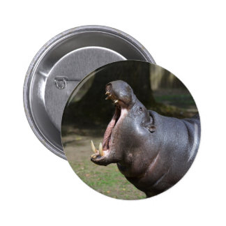 Hippo with His Mouth Open Pinback Button
