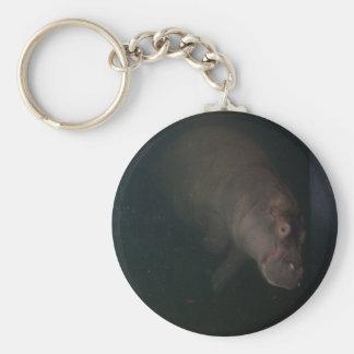 Hippopotamus Abstract #4 Key Ring