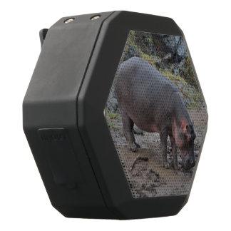 hippopotamus, black boombot rex bluetooth speaker