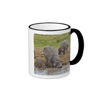 Hippopotamus, Hippopotamus amphibius, Serengeti Ringer Coffee Mug
