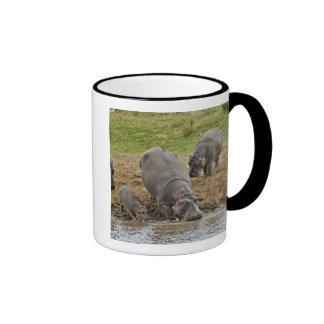 Hippopotamus, Hippopotamus amphibius, Serengeti Ringer Mug