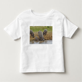 Hippopotamus, Hippopotamus amphibius, Serengeti Toddler T-Shirt
