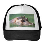 Hippopotamus Swimming On The Surface Trucker Hat