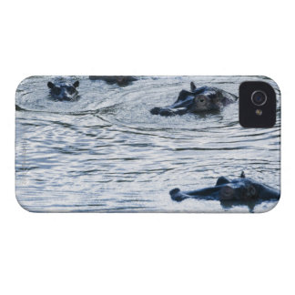 Hippopotamuses wading in a river, Africa Case-Mate iPhone 4 Case