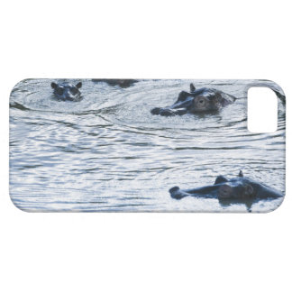 Hippopotamuses wading in a river, Africa iPhone 5 Cases