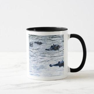 Hippopotamuses wading in a river, Africa Mug