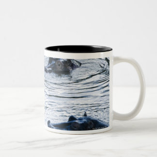 Hippopotamuses wading in a river, Africa Two-Tone Coffee Mug