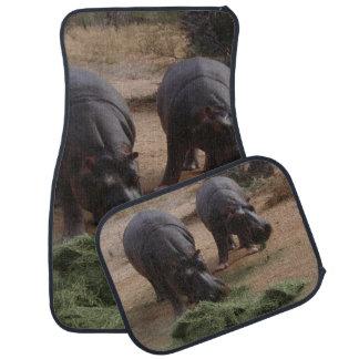 hippos car mat
