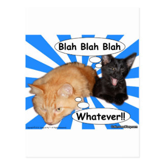 Hippy Kitty Blah Blah Blah Whatever!! Postcard