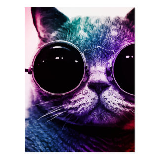 Hipster Cat Pop Art Postcard