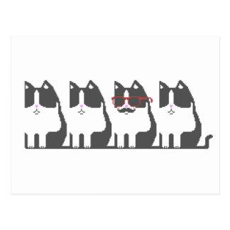 Hipster Cat Standing Out Pixel Art Postcard