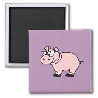 Hipster cool sow piglet refrigerator magnets