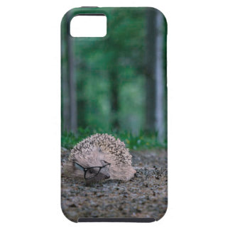 Hipster Hedgehog iPhone 5 Case