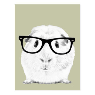 Hipster Pigster Post Cards