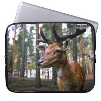Hirsch -wild laptop sleeve