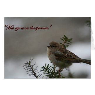 """""""His eye is on the sparrow"""" Greeting Card"""