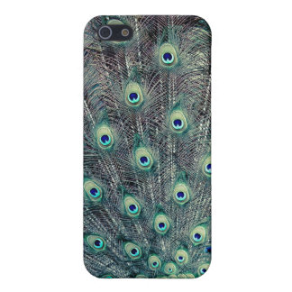 His Feathered Majesty iPhone 5 Cover