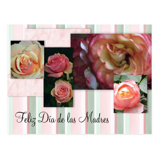 Hispanic Mother's Day Card/Feliz Día de las Madres