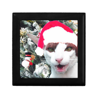 Hissing Cat in a Santa Hat Gift Box