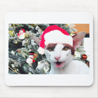 Hissing Cat in a Santa Hat Mouse Mat