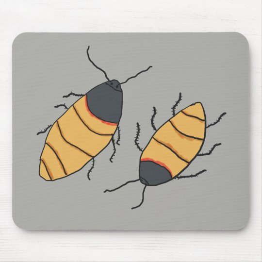 Hissing Cockroaches Mouse Mat