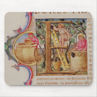 Historiated initial 'E' depicting grape picking Mouse Pad