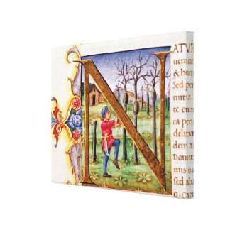 Historiated Initial 'N' Canvas Print