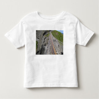 Historic Carrick-a-rede rope bridge, Northern Toddler T-Shirt