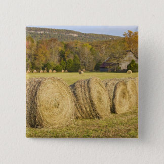 Historic farm in the Buffalo National River, 15 Cm Square Badge
