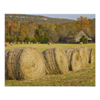 Historic farm in the Buffalo National River, Poster