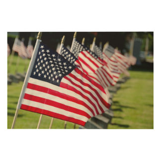 Historic military cemetery with US flags Wood Wall Decor