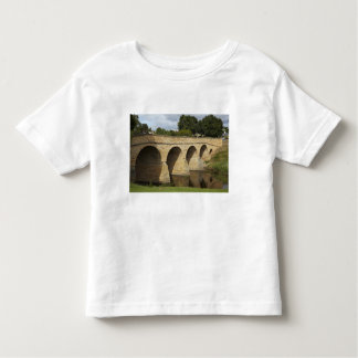 Historic Richmond Bridge (Australia's oldest Toddler T-Shirt