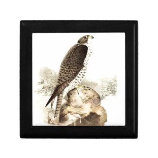 Historical bird painting gift box