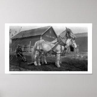 Historical Maple Row Farm photograph Poster